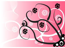 Flower background. Rose background with black and white flowers Royalty Free Stock Photos