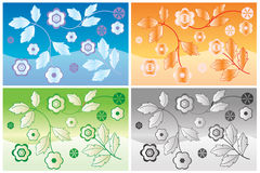 Flower background. Different color flower background whit leaf and flowers Royalty Free Stock Photos