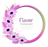 Flower background with beautiful purple flowers. Royalty Free Stock Image