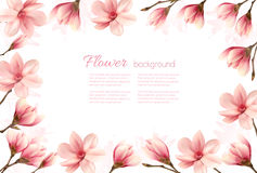 Flower background with a border of pink magnolia blossoms. Royalty Free Stock Photography