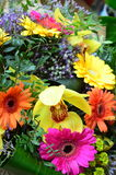 Flower background with bright flowers Royalty Free Stock Image