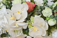 Flower background with bright flowers Stock Photo