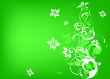 Flower background with bud Stock Photo