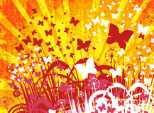 Flower background with butterfly Stock Photography