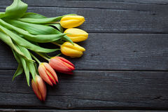 Flower background for a card to the International Women`s Day or victory day on 9 may. Tulips on a black wooden background Royalty Free Stock Photography
