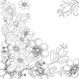 Flower background, contours. Abstract background with a symbolical flowers, monochrome contours Stock Images