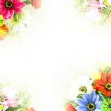 Flower background.  Fake flowers Stock Photo