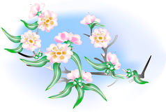 Flower background with flowering almond. Element for design.Vector illustration Stock Photos