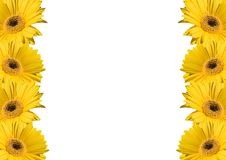 Flower background frames. White page decor with flowers Stock Photo