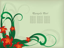 Flower background with a green background Royalty Free Stock Photography