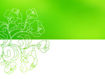 Flower background green white frame abstract illustration Royalty Free Stock Images