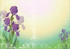 Flower background for greetings card Stock Photo