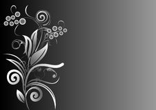 Flower background in grey scale Stock Image