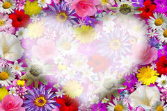 Flower background with heart. Stock Photos