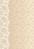 Flower background with lace Stock Images