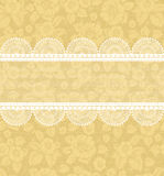Flower-background with lace Royalty Free Stock Image