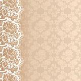 Flower background with lace Stock Image