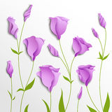 Flower  background. Lilac eustoma Stock Photos