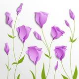 Flower  background. Lilac eustoma Stock Photos