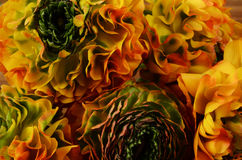 Flower background, macro of orange, yellow, green petals. Close up of bouquet Royalty Free Stock Photo