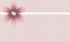 Flower background (pattern flower) Royalty Free Stock Image
