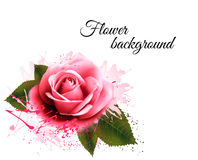 Flower background with a pink rose. Stock Photo