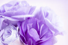 Flower Background Purple Lisianthus. Flower background with violet eustoma or lisianthus Stock Photo