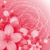 Flower background on red Stock Image