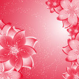 Flower background on red Stock Photos