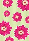 Flower background. Sakura and blossom flower wallpaper Royalty Free Stock Image