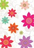 Flower background. Sakura and blossom flower wallpaper Royalty Free Stock Photography