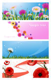 Flower background set Royalty Free Stock Photos