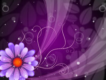 Flower Background Shows Petals Blooming And Beauty Stock Photo