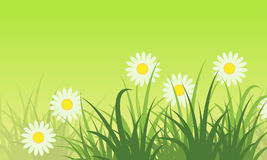 Flower background spring theme vector flat. Collection Stock Photography