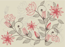 Flower background in vector. Floral seamless backgrounds for design of fabrics and wallpapers in vector Royalty Free Stock Photography