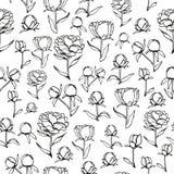 Flower black and white background stock illustration