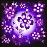 Flower background. Flower, vegetable background Stock Images