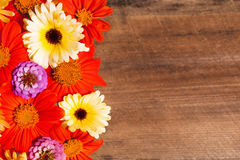Flower Background with Wood Royalty Free Stock Images
