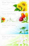 Flower backgrounds. Illustration, AI file included Royalty Free Stock Photos
