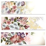 Flower backgrounds set in floral style. Set of floral brochures with flowers for design Stock Images