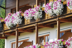 Flower Balcony Stock Image