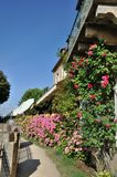 A flower balcony with geranium. In Domme stock photos