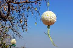 Flower ball. Stock Photos
