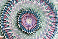 Flower banknote Royalty Free Stock Photos