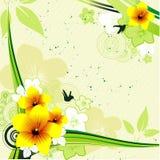 Flower  banner Stock Images