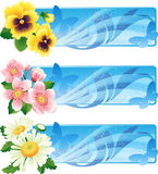 Flower banner royalty free illustration