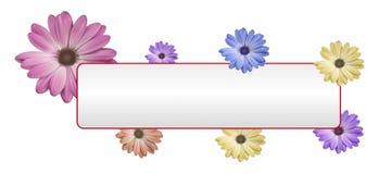 Flower banner. Beautiful flower around the white banner Stock Image