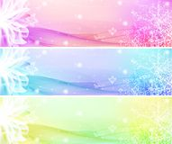 Flower Banner Set. Flower Banner with waves and lights EPS Vector Illustration