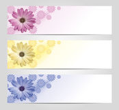 Flower banner set. Pink, yellow and blur banner with flowers Stock Photography