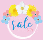 Flower banner with text summer sale on pink background with beautiful flowers. Artistic design vector banners, greeting Royalty Free Stock Images